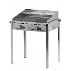 Green Fire Gasbarbecue met 2 Branders Profi Line Barbecue Gas